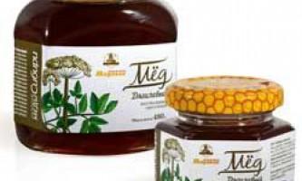Характеристики дягілєва меду, його корисні і лікувальні властивості