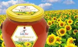 Характеристики соняшникового меду, його корисні і лікувальні властивості