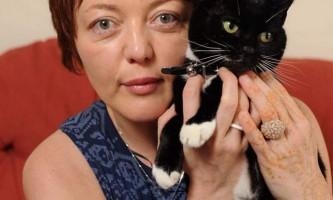 Господиня втекла кішки судилася з її новими господарями протягом року, бажаючи повернути її собі