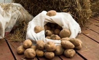 Зберігання картоплі в домашніх умовах
