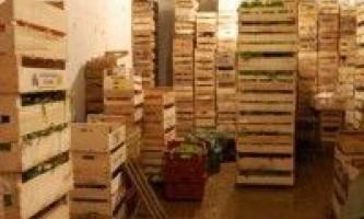 Зберігання столових коренеплодів