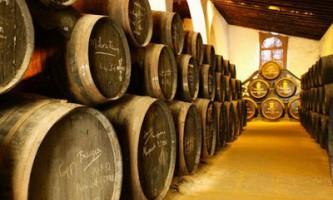 Зберігання винограду, робимо домашнє вино (відео)