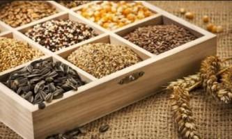 Зберігання насіння, як зберегти насіння правильно