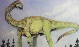 Ідентифіковано найдавніший викопний динозавр великобритании
