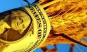 Червневі прогнози українського зернового ринку від аналітиків мсх сша