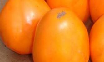 Індетермінантні томати