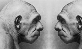 Цікаві факти про людину і людство