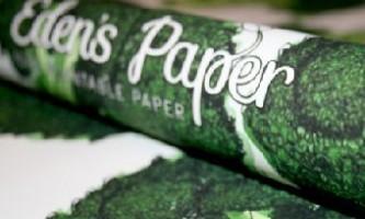 З обгорткового паперу виросте урожай