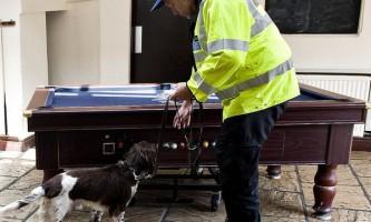 Ізраїльський нанодатчік вибухівки дасть фору собачому носі