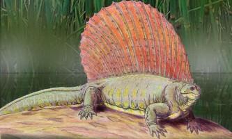 Едафозавр або земної ящір