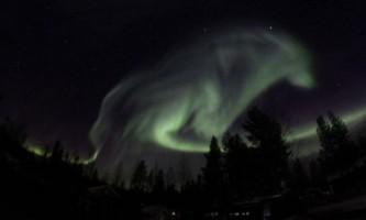 У нічному небі над швецією з`явився сяючий вовк