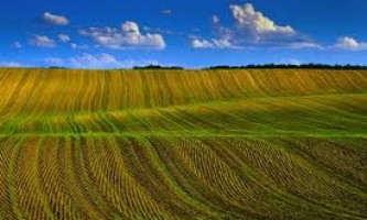 Економічні основи рослинництва