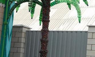 Екзотика зі сміття, пальма з пластикових пляшок своїми руками