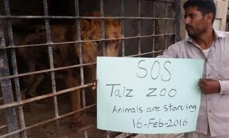 Єменський зоопарк смерті відроджується