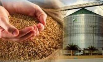 Як зберігають зерно, в промислових масштабах і вдома