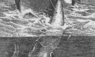 Як непомітно підкрастися до гігантського кальмару