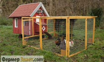 Як правильно самому побудувати курник