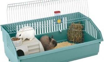 Особливості клітин для декоративних кроликів