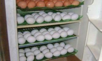 Як самому зробити інкубаторне пристрій з холодильника? Навчальне відео