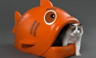Як вибрати біотуалет для кішок, достоїнства і недоліки закритого лотка