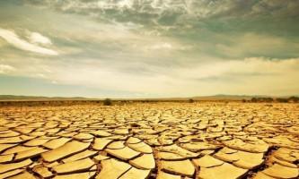 Як вижити в екстремальних умовах африки