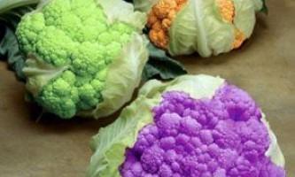 Які сорти цвітної капусти найкращі