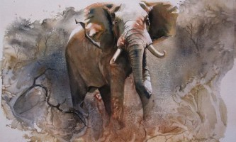 Картини африканських тварин від карен лоренс-роу (karen laurence-rowe)