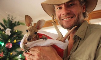 Кенгуру данди (kangaroo dundee)