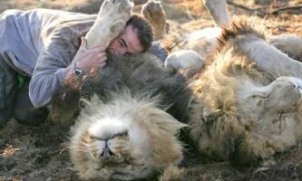 Кевін річардсон - заклинатель левів