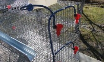 Клітини для гусей