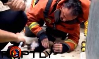 Колумбійські поліцейські врятували собаку, що потрапила в бурхливий потік