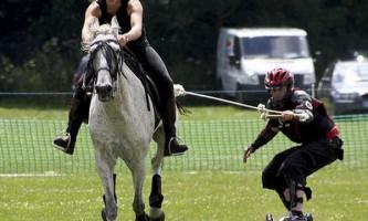 Кінний бордігой (horse-boarding): новий екстремальний вид спорту