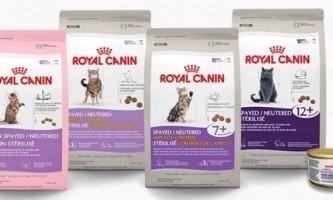 Корм для кішок royal canin: огляд, відгуки та рекомендації