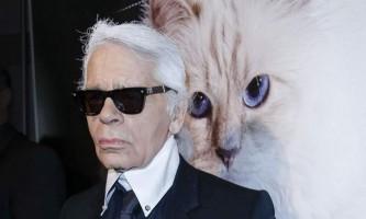 Кішка карла лагерфельда заробила 3 мільйони євро за рік