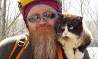 Врятований з автомобільного двигуна кіт став інтернет-сенсацією