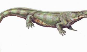Котилозаври