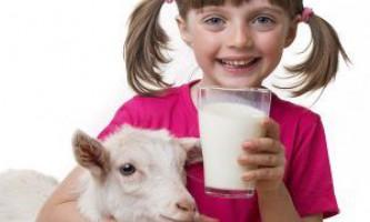 Козяче молоко - джерело здоров`я