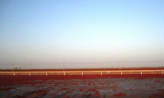Червоний берег в паньцзінь, китай