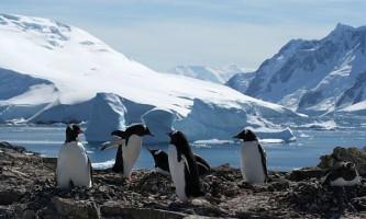 Льоди антарктики більш стабільні, ніж вважалося