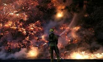 Лісова пожежа бушує в американському нацпарку йосеміті