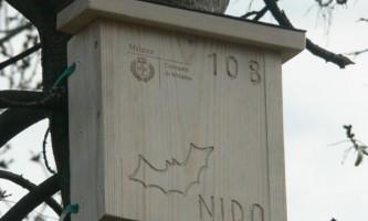 У парках мілан встановили 400 будиночків для кажанів