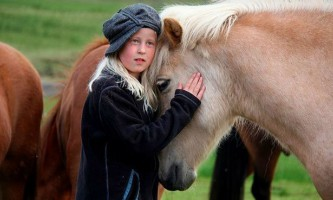 Коні здатні розуміти емоції людини