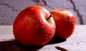 Кращі ранні сорти яблунь