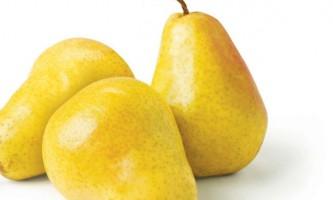 Кращі сорти груш