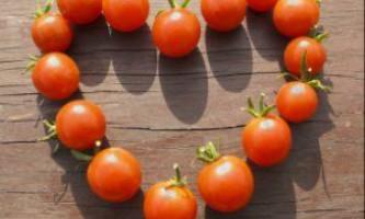 Кращі сорти томатів черрі