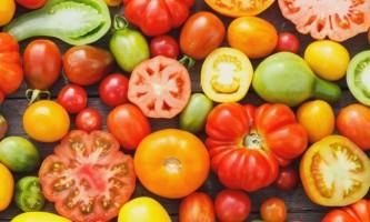 Кращі сорти томатів для відкритого грунту