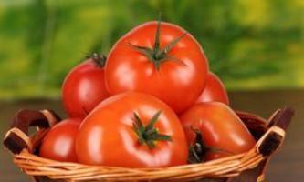 Кращі сорти томатів: опису, гідності, недоліки