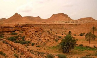 Луга цукри перетворилися на пустелю через нахил осі землі