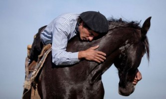 Мартін татта - заклинатель коней з аргентини