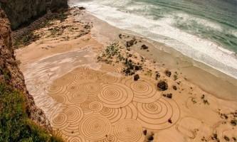 Масштабні картини на піску тони планта